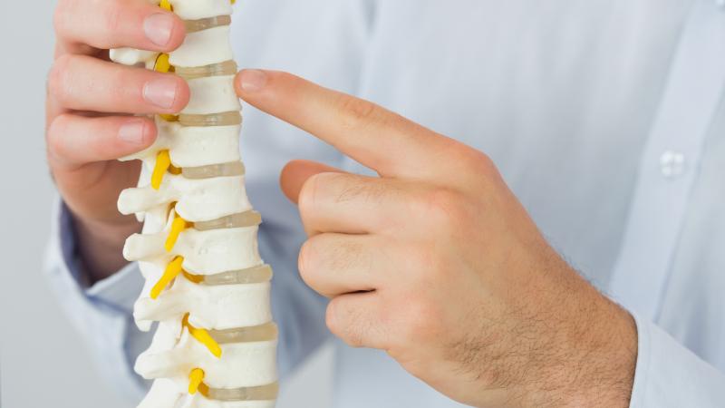 Chiropractor Ann Arbor, Michigan